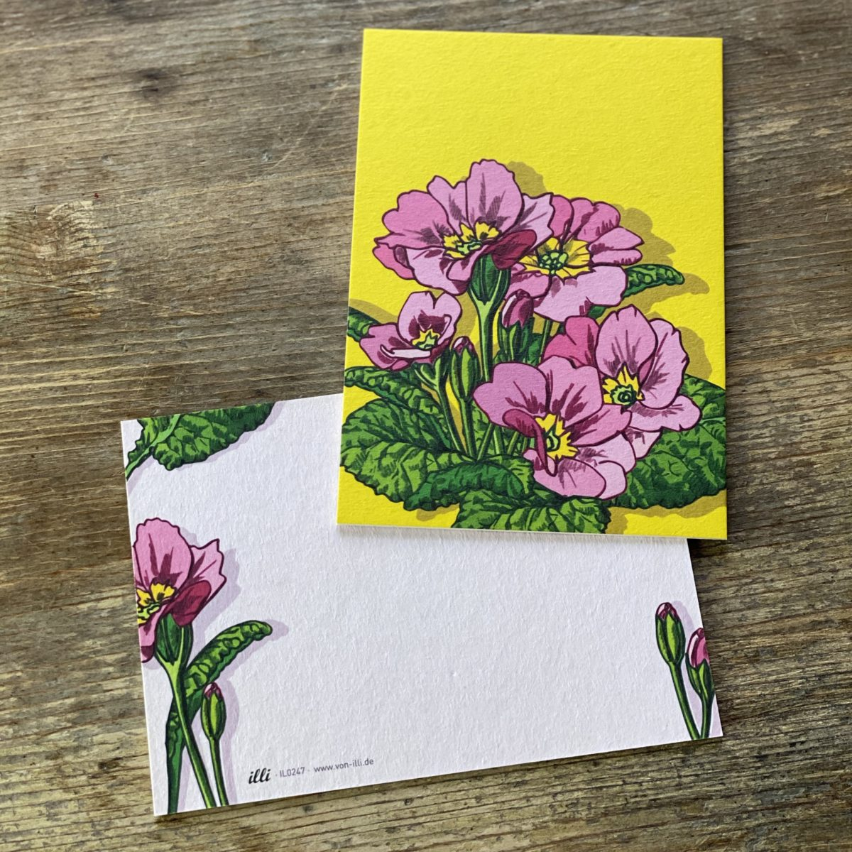 KYUTE Postkarte von illi PRIMULA PINK